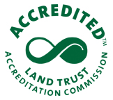 accreditation seal green