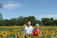 PDLT Protects 2nd Largest Working Farm- Hagin's Prong, Marlboro County