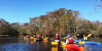 Little Pee Dee Paddle & Lunch at Ark Lodge